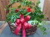 Garden Basket 1 $100.00