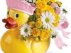 Ducky Delight