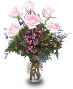 6-roses-arg