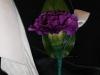 mini carnation with ribbon