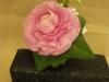 fresh corsage: ranunculus, ivy