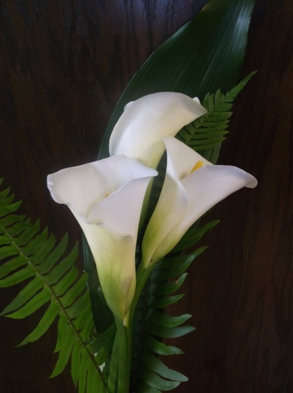 3 large calla lilies with sword fern
