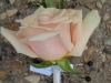 Boutonniere of blush colored rose