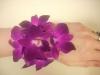 Orchid wrislet