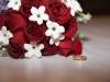 Roses, stephanotis